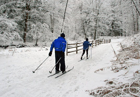 A couple Cross Country Skiing