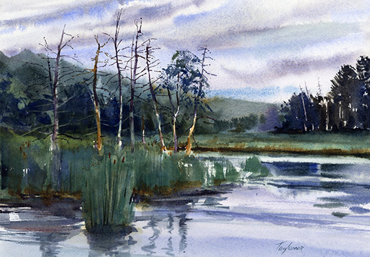 tony connor artist landscape painting
