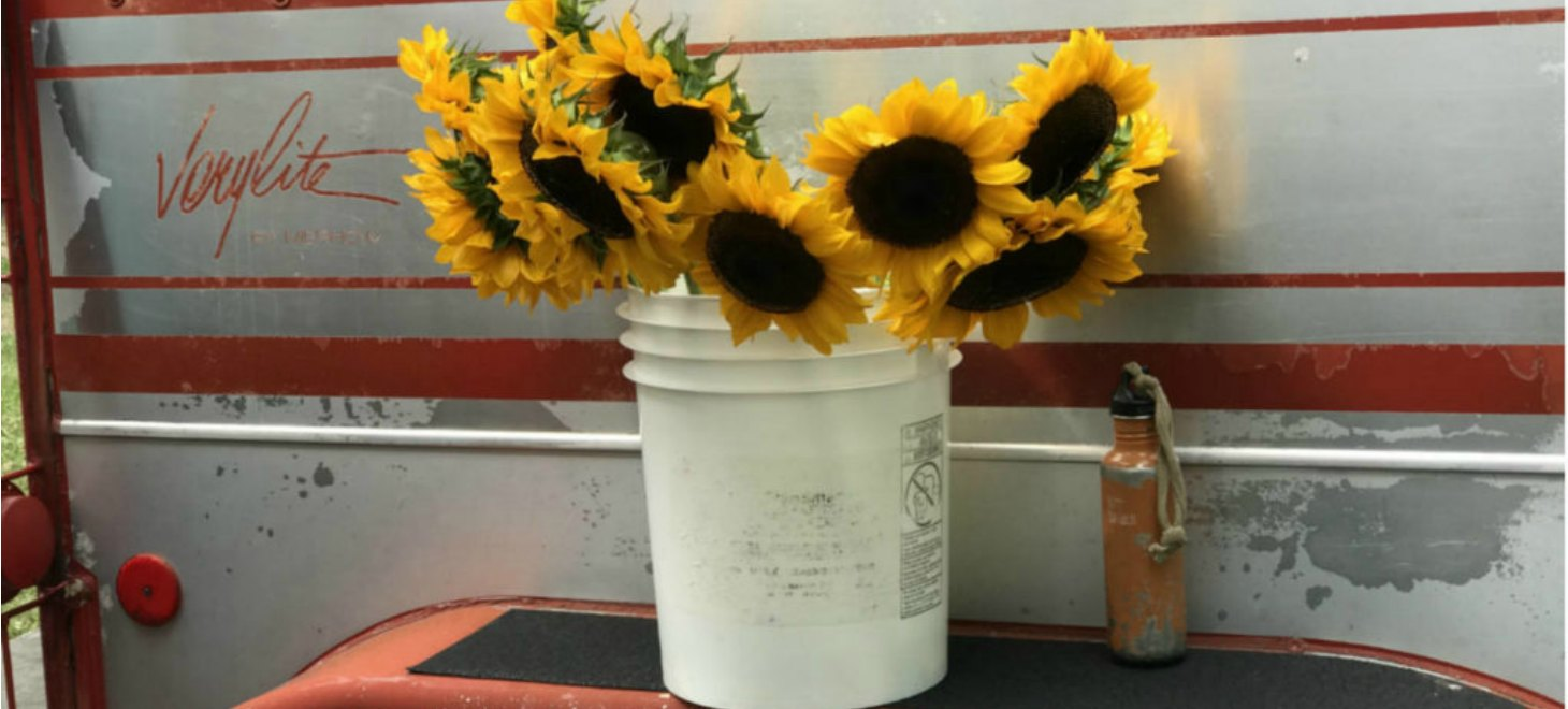 sunflowers on rustic red and silver trailer at bennington farmers market in vermont