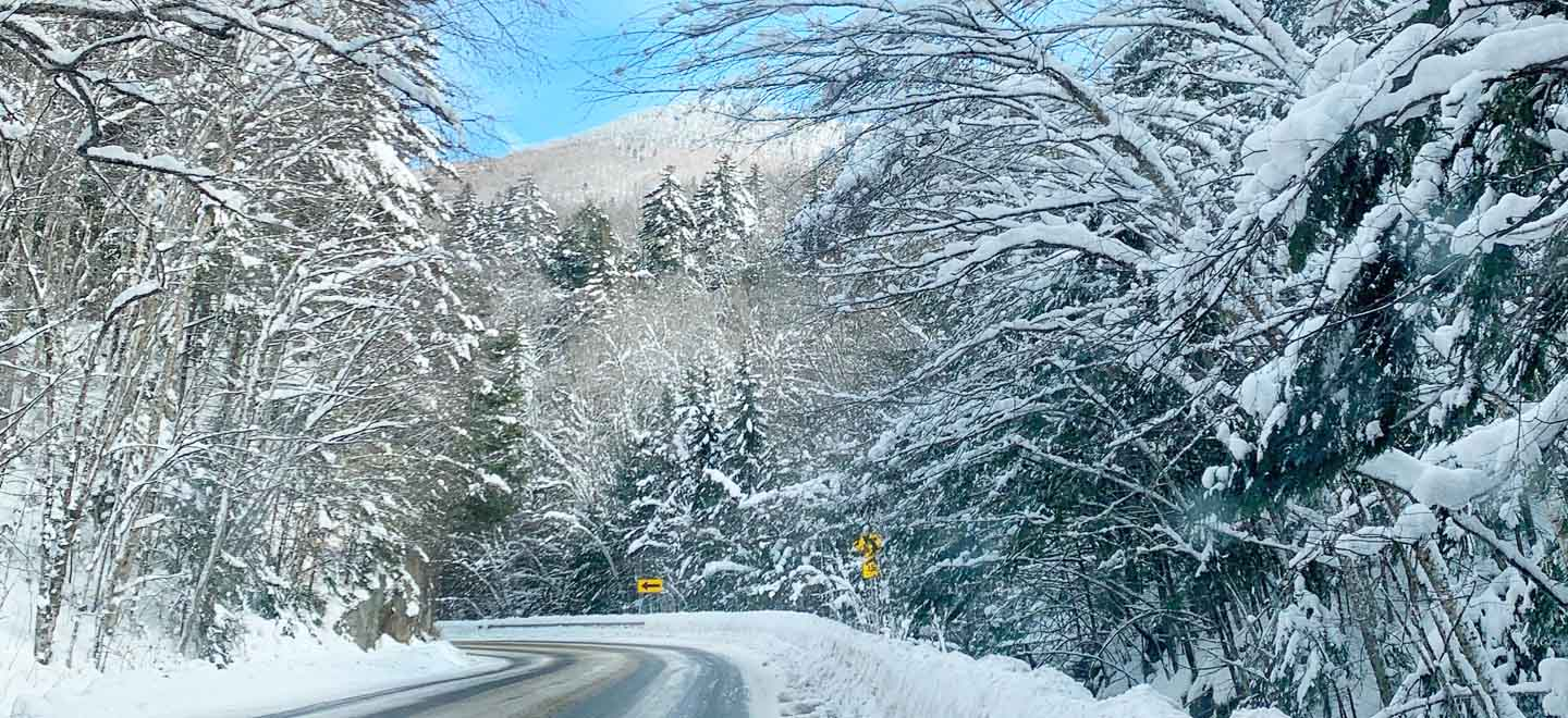 vermont winding road snow covered trees