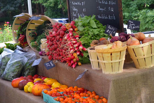 arlington vermont farmers market radishes and tomatoes
