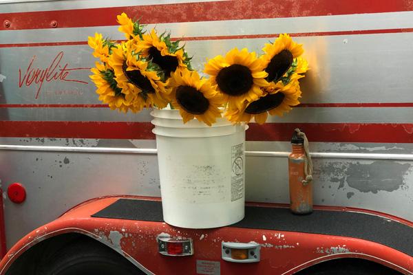 Sunflowers-on-trailer-wheel-well-vermont-farmers-market